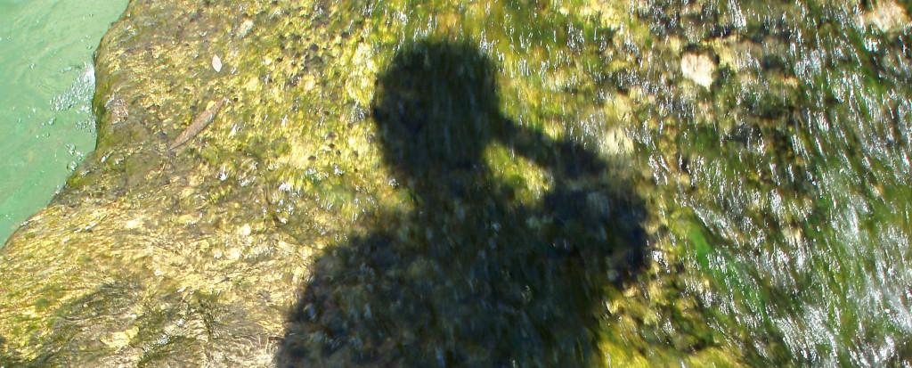 Schattenportrait auf Wasser
